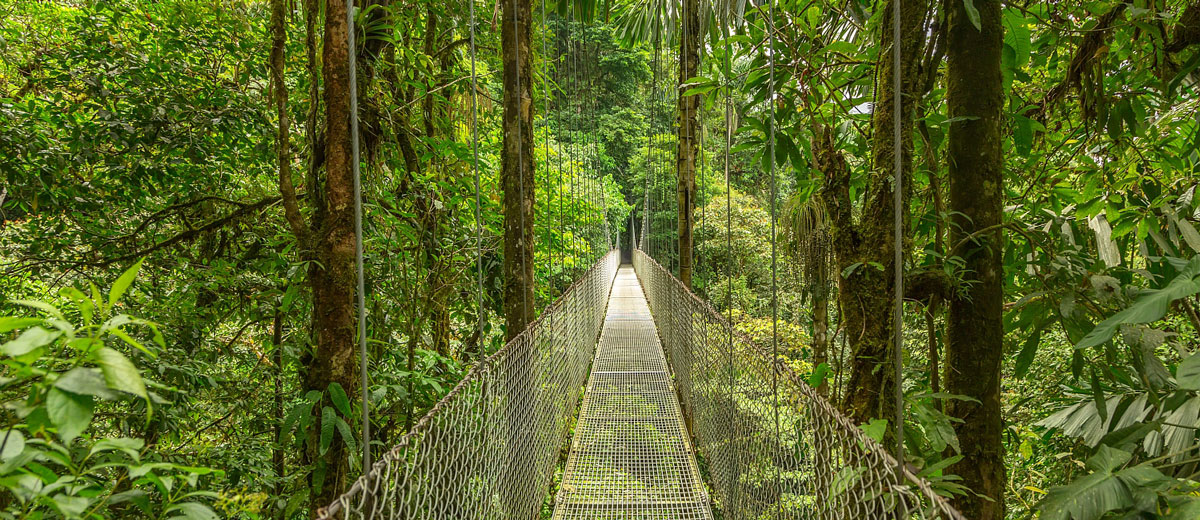 voyage costa rica amerique amplitudes jungle