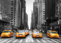 sejour a new york taxis jaunes